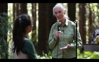 Jane Goodall inspires kids at Berkeley's Redwood Grove